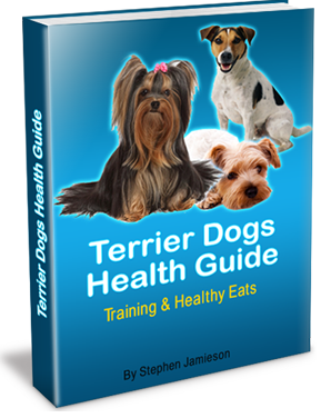 Terrier Dog Health Guide